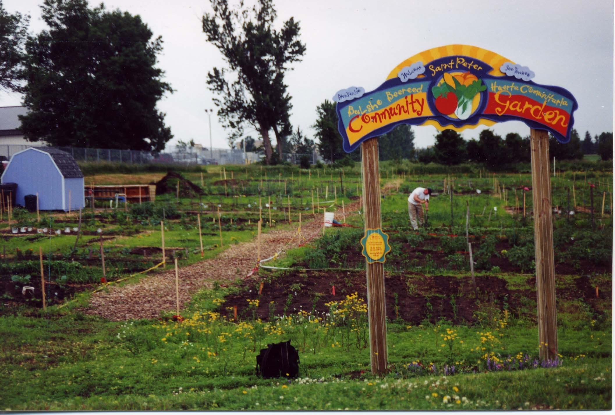 St Peter Community Garden Growing together for a
