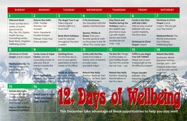 12-days-of-wellbeing-2013.jpg