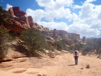 Canyonlands 2015
