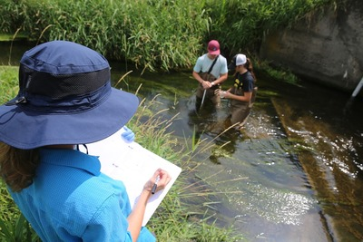Students gathering field data for 7-Mile Creek community engagement project