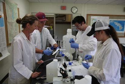 Triplett Lab