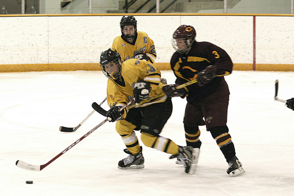Andrea Peterson of Gustavus battles with Andrea Dunn of Concordia for control of the puck.