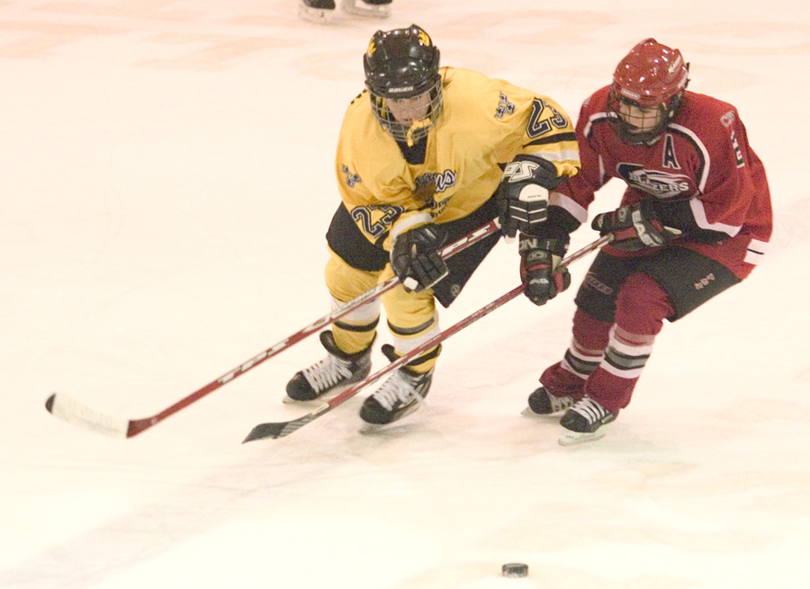 Gustavus' Andrea Peterson skates past a Saint Ben's defender.