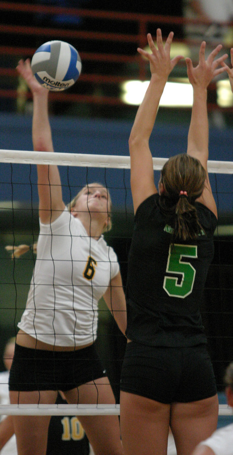 Meghan Gehring leads Gustavus with 311 kills.