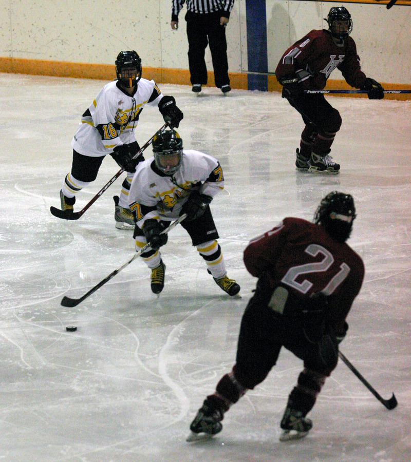 Kathryn DelZoppo skates the puck out of the Gustavus zone.