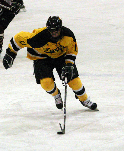 David Martinson leads the Gusties with 38 points (24 goals, 14 assists).