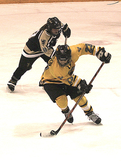 Defender Andrea Peterson starts a rush up the ice for the Gusties.