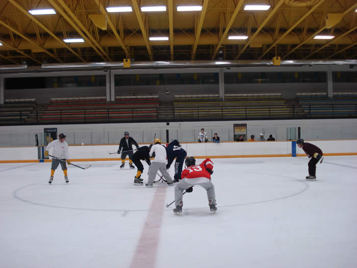 2010 IM Hockey Season