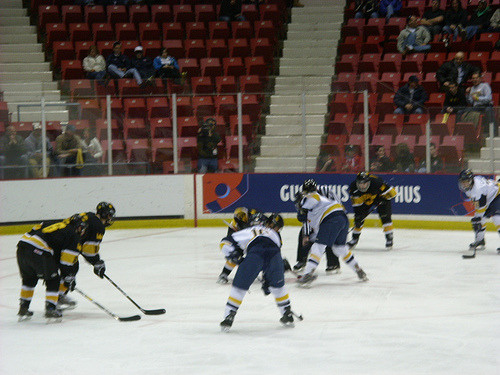 Gustavus Hockey